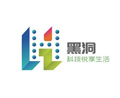 黑洞公司logo设计