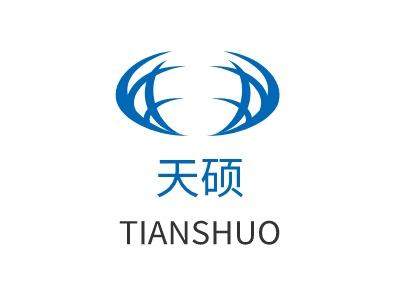 南京天硕公司logo设计