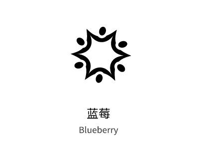 济南蓝莓brandlogo设计