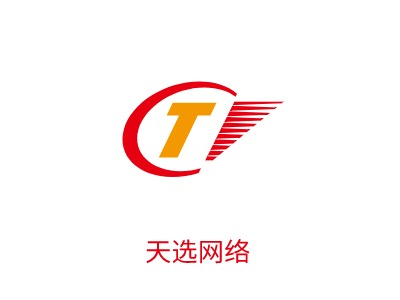 杭州天选network公司logo设计
