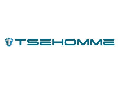 青岛tsehomme公司logo设计