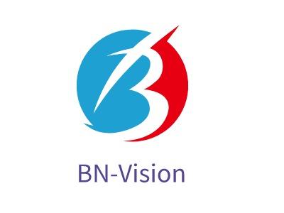BN-Vision企业标志设计