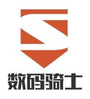 云浮数码骑士公司logo设计