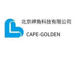 合肥北京岬角科技有限公司企业标志设计