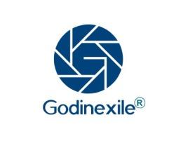 济南Godinexile公司logo设计