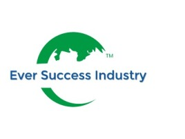 西安Ever Success Industry公司logo设计