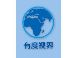 有度视界公司logo设计