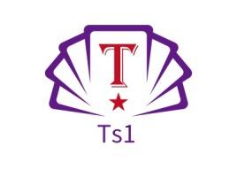 Ts1logo标志设计