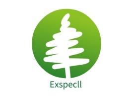 Exspeclllogo标志设计