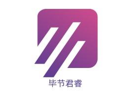 毕节君睿公司logo设计