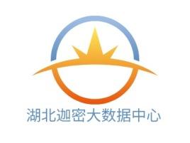 湖北迦密大数据中心公司logo设计