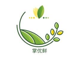 掌优鲜品牌logo设计