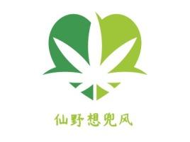 仙野想兜风logo标志设计
