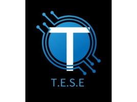 T.E.S.E公司logo设计