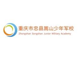 重庆市忠县嵩山少年军校logo标志设计
