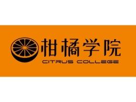 柑橘学院logo标志设计