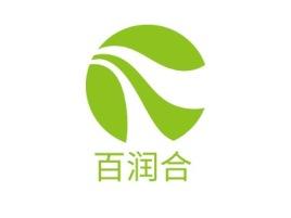 百润合品牌logo设计