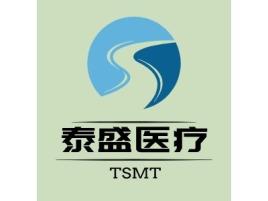 泰盛医疗公司logo设计