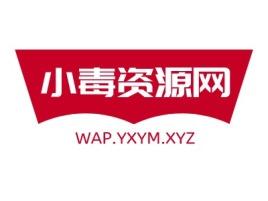 小毒资源网logo标志设计