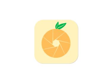 橘子水果簡約創意app圖標標志LOGO設計
